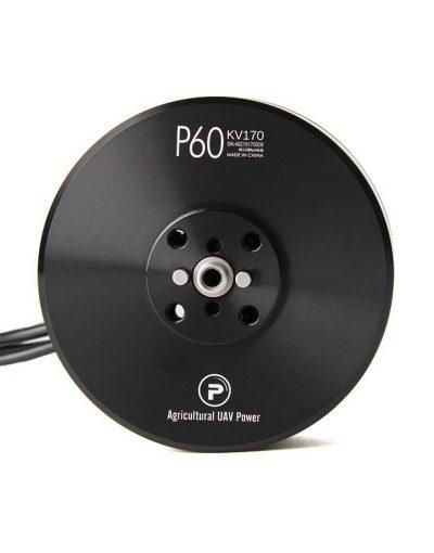 p60 motor